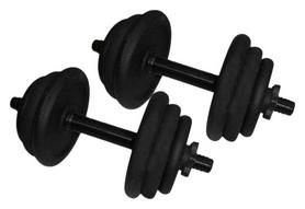 Гантели наборные стальные Newt 2 шт по 12,5 кг (NE-300-GP013-2)