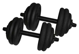 Гантели наборные стальные Newt 2 шт по 14,5 кг (NE-300-GP015-2)