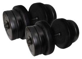 Гантели наборные Newt Rock Pro 2 шт по 20,5 кг (NE-PL-G-020-2)