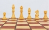 Набор игр 3 в 1 (шахматы, шашки, нарды) магнитный Backgammon - Фото №2