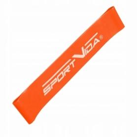 Резинка для фитнеса SportVida Mini Power Band 10-15 кг SV-HK0202