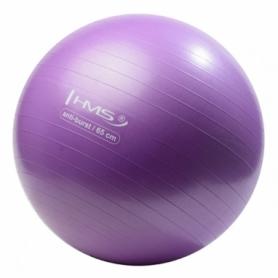 Мяч для фитнеса (фитбол) HMS YB02 65 см Anti-Burst Purple