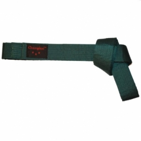 Пояс для кимоно Champion (A00038) - зеленый, 260 см