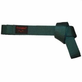 Пояс для кимоно Champion (A00037) - зеленый, 280 см