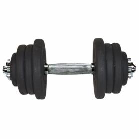 Гантель наборная стальная Champion (A00317), 25,5кг