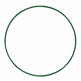 Обруч металлический Champion (CH-3584) - зеленый, 65см