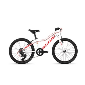 """Велосипед детский Ghost Lanao R1.0 20"""", 2019 (SB18LA9001) - бело-черный"""
