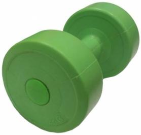 Гантель для фитнеса Evrotop SS-LKDB-601-2, 2 кг