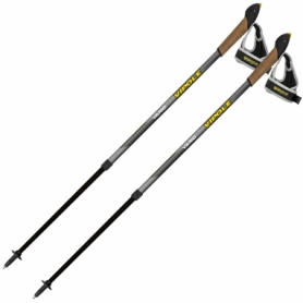 Палки для скандинавской ходьбы Vipole Vario Novice Grey S2033 (SN928539)