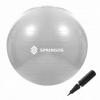 Мяч для фитнеса (фитбол) 75 см Springos Anti-Burst Grey (FB0008)