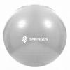 Мяч для фитнеса (фитбол) 75 см Springos Anti-Burst Grey (FB0008) - Фото №4