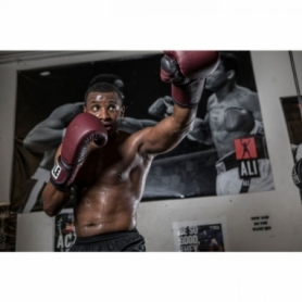 Перчатки боксерские TITLE Boxing Ali Authentic Leather Training (FP-8461-V) - Фото №4
