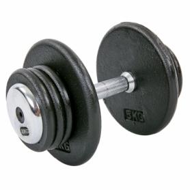 Гантель профессиональная стальная Record (TA-7231-20), 20кг