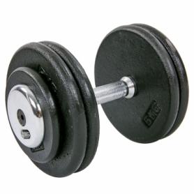 Гантель профессиональная стальная Record (TA-7231-25), 25кг