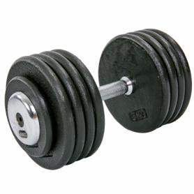 Гантель профессиональная стальная Record (TA-7231-45), 45кг