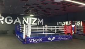 Ринг боксерский V`Noks Competition, 6х6х0,5 м (RDX-1715) - Фото №4
