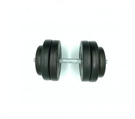 Гантель наборная композитная в пластиковой оболочке Newt Rock Pro-R NE-PL-R-014, 14,5 кг