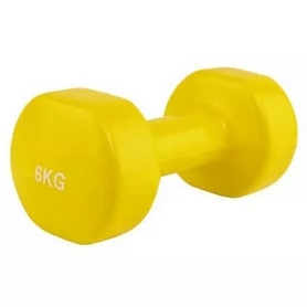 Гантель для фитнеса виниловая Stein, 6 кг (LKDB-504A-6)
