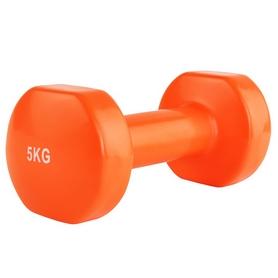 Гантель для фитнеса виниловая Stein, 5 кг (LKDB-504A-5)