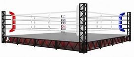 Ринг боксерский V`Noks Exo, 6х6х0,5 м (RDX-2093)