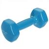 Гантель для фитнеса виниловая Zelart голубая, 3 кг (TA-2777-3_CYAN)